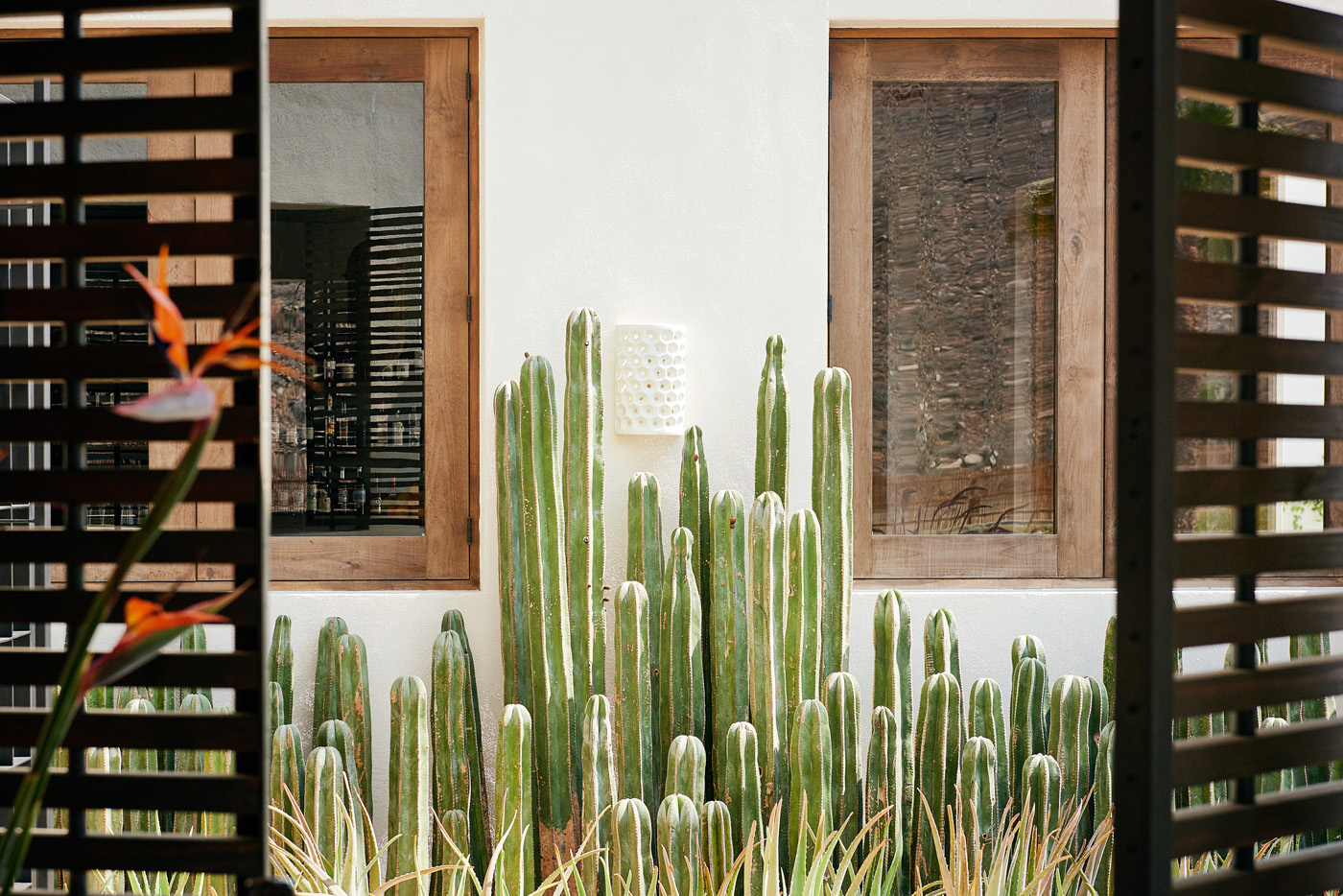 Exterior of the hotel with Cacti