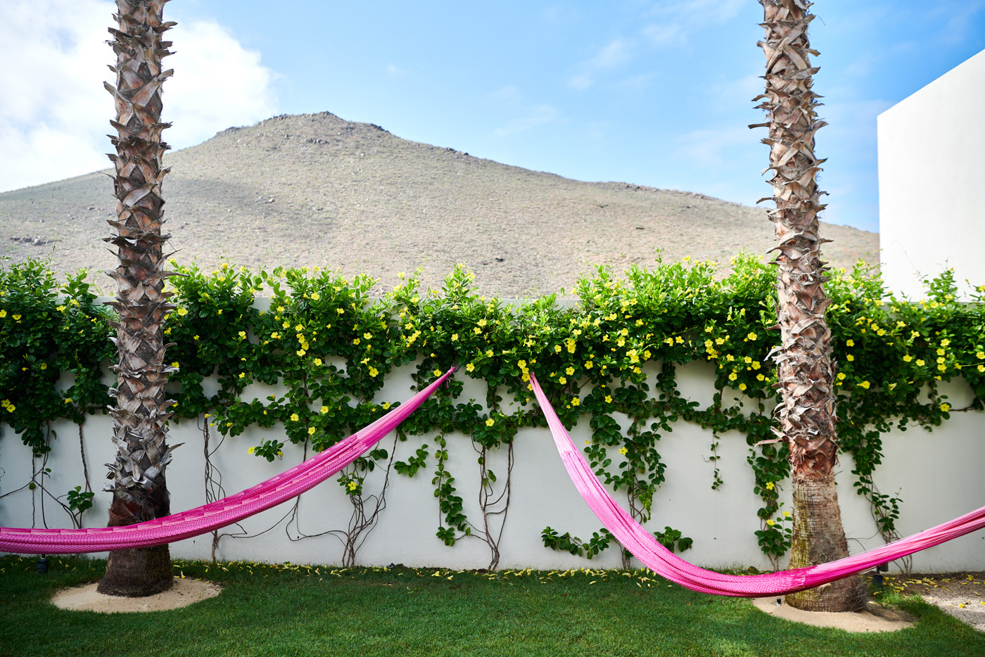 Hammocks in the garden with a view of the mountains
